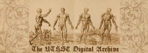 Digital Archives Banner - Muscle Anterior